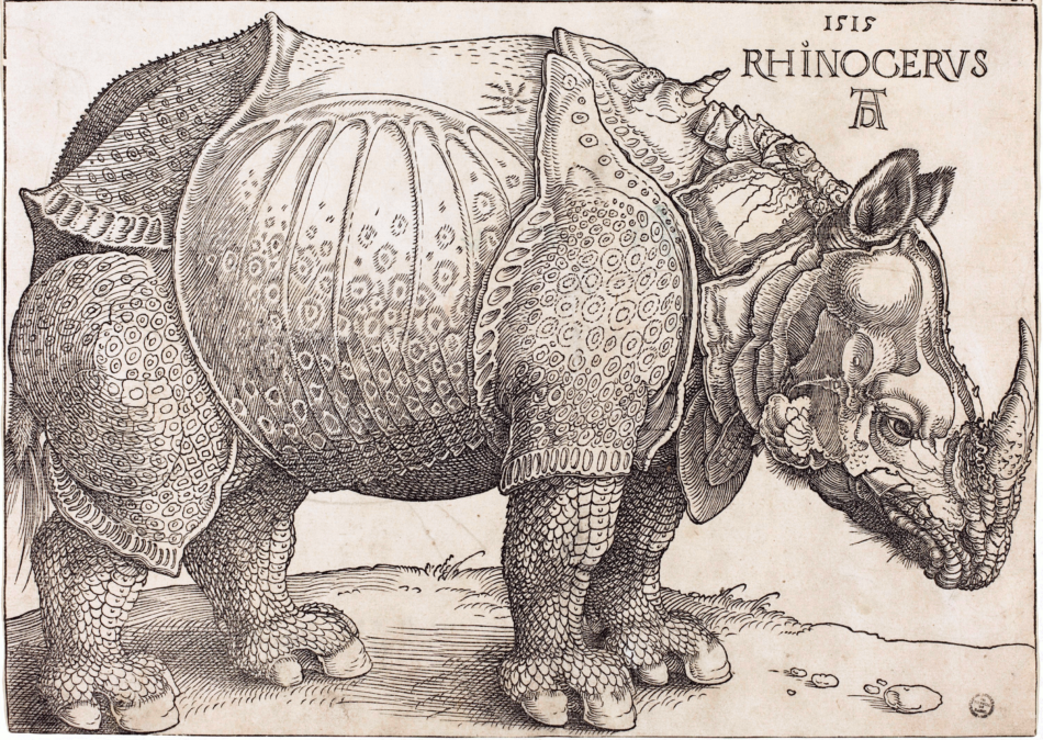 The_Rhinoceros_(NGA_1964.8.697)_enhanced