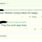 Screenshot-2018-5-2 In honor of r Incels getting shut down, I thought I'd share this classic • r insanepeoplefacebook
