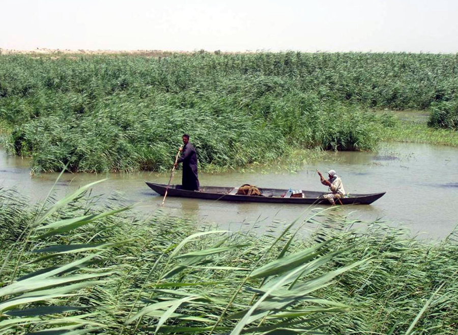 Marsh_Arabs_in_a_mashoof