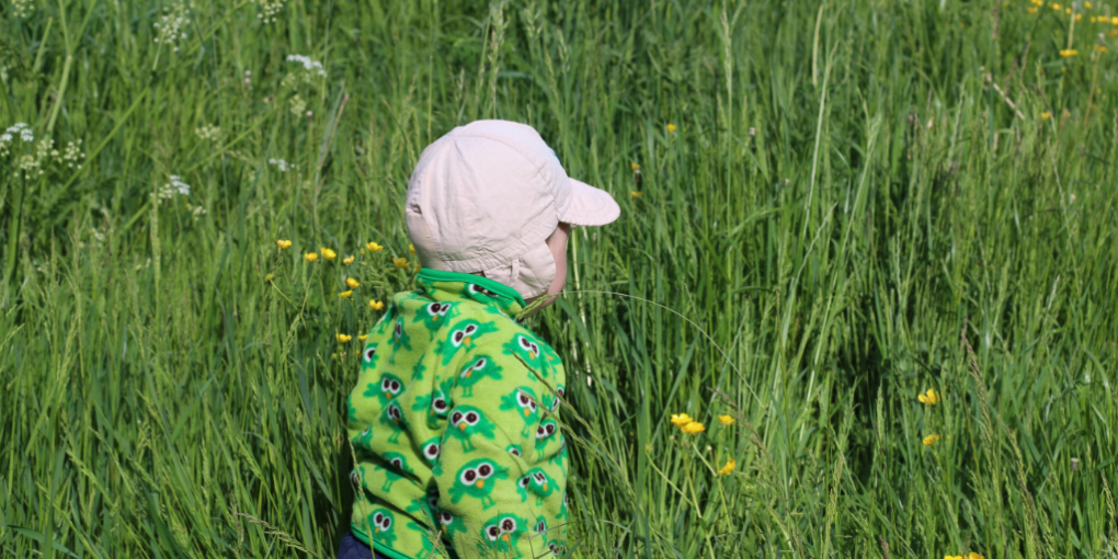 A photo of a small kid in a field